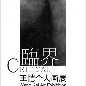 【临界-王恺个人作品展】2011年