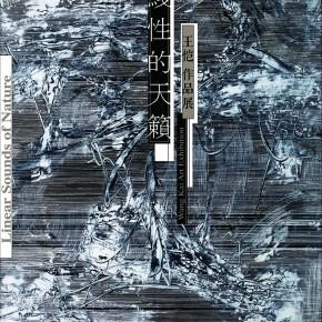 线性的天籁-王恺作品展2019